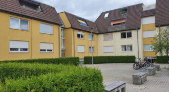 Closing the pension gap, 1 room basement apartment in 72072 Tübingen Derendingen.